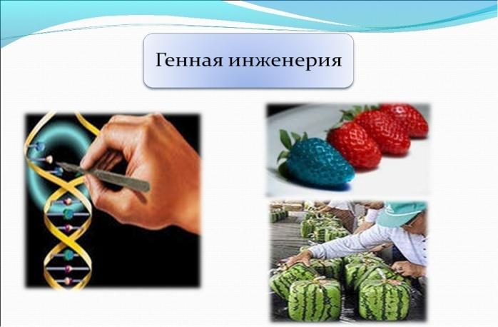 https://fs00.infourok.ru/images/doc/224/24919/1/img9.jpg